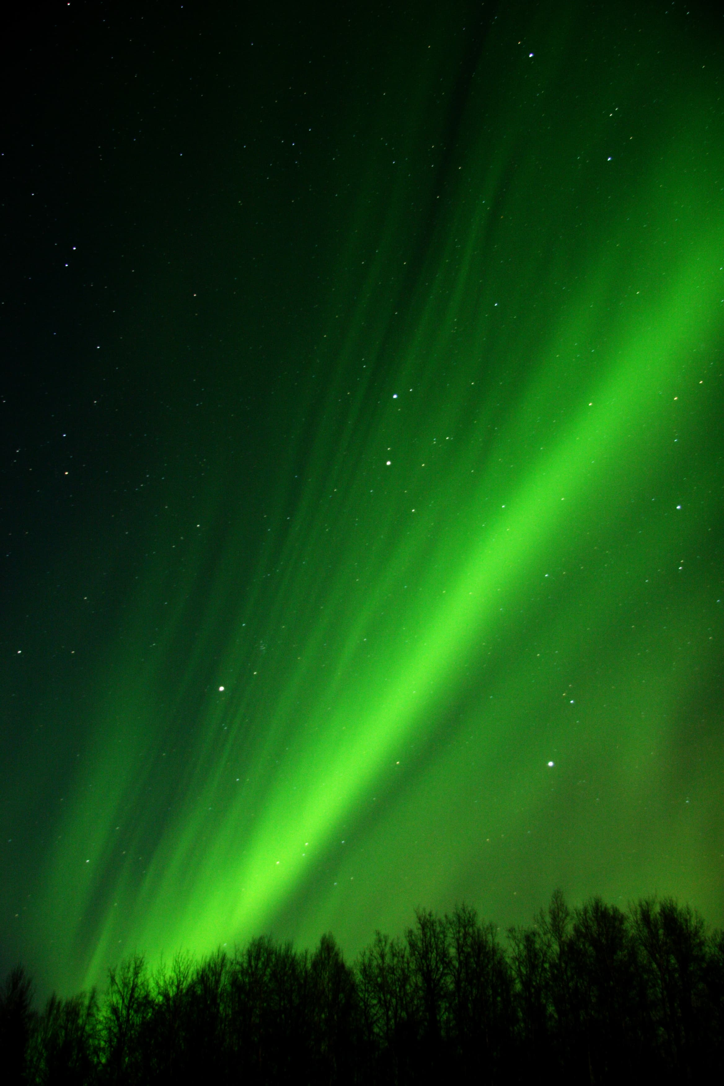 The Best Places in Alaska to See the Northern Lights